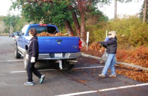 Sally has her truck full of leaves to take to Cascade Bark
