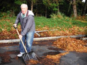 Jim shoveling his piles of leaves