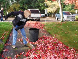 leaves are colorful but they must go Karen says