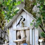 Otter Bay birdhouse