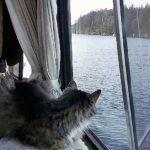 Friskey Stem makes her maiden voyage on Pipe Dream