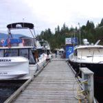 Pipe Dream & Seahorse docked at Egmont
