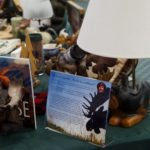 Sally's Eclectic Moose Collection